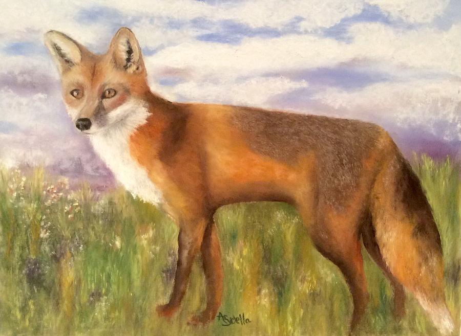 Tennessee Wildlife Red Fox by Annamarie Sidella-Felts