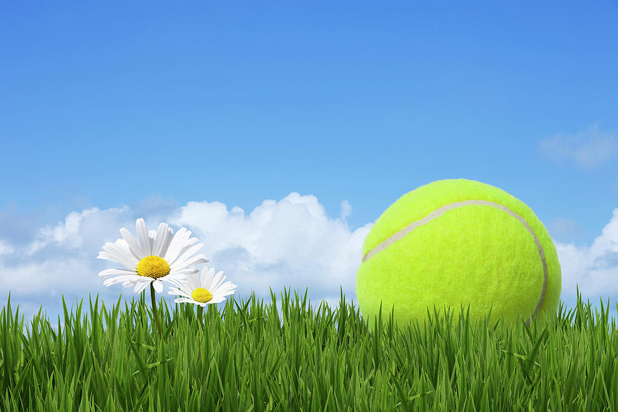 Horizontal Photograph - Tennis Ball by Andrew Dernie
