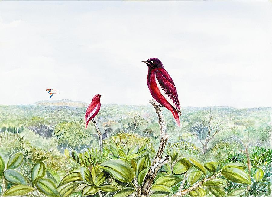 Cotinga Painting - Tepui Guards by Robin Schiele