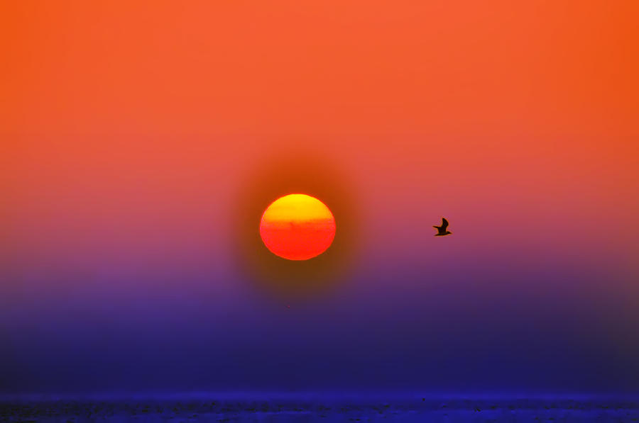 Sunrise Photograph - Tequila Sunrise by Bill Cannon