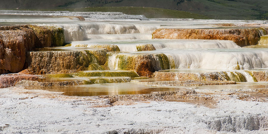 Mammoth Hot Springs Photograph - Terrace Colors by Chad Davis