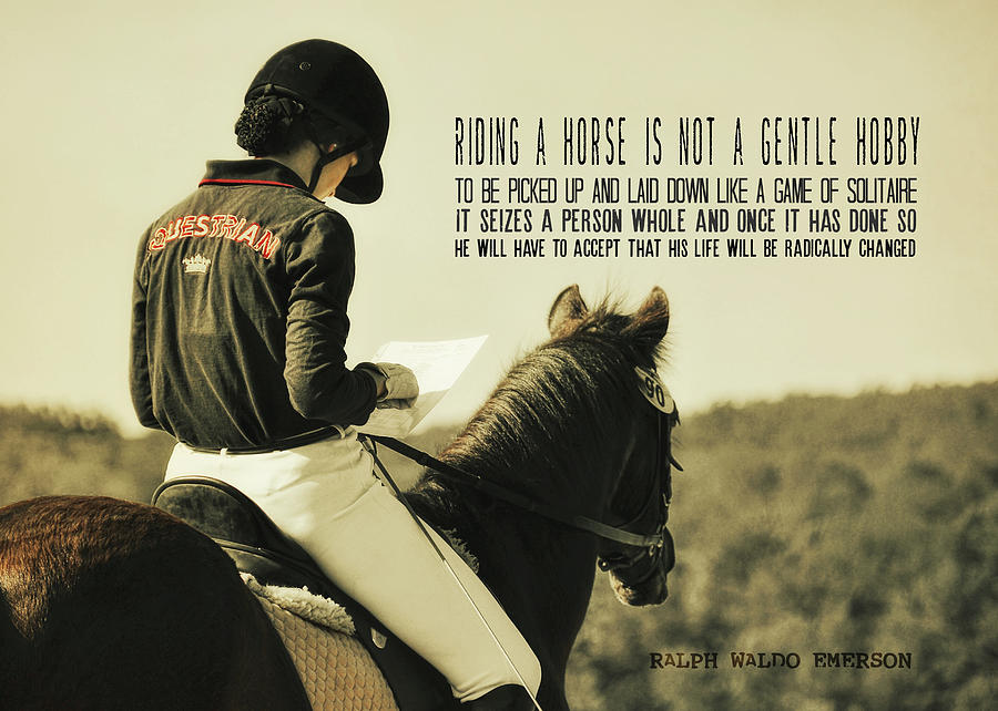 Horse Photograph - Test Ready Quote by JAMART Photography