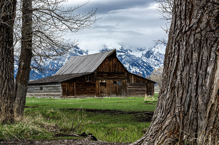 Teton Barn #1 by Scott Read