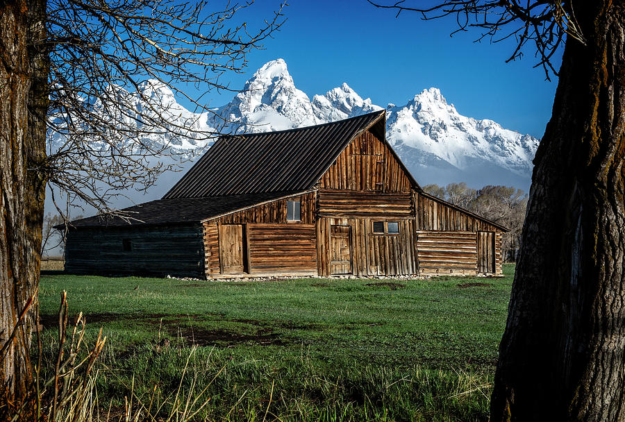 Moulton Barn and Tetons by Scott Read