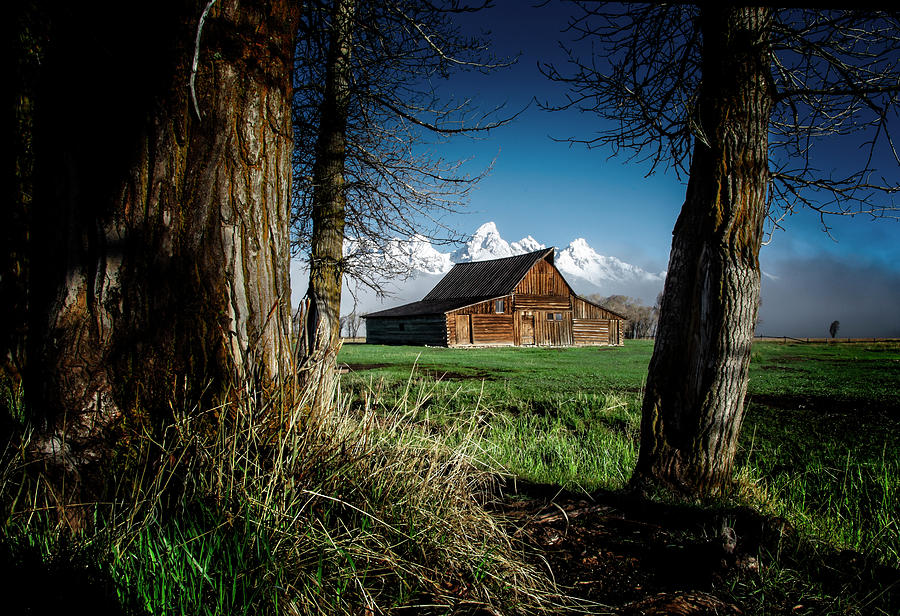 Tetons and Moulton Barn by Scott Read