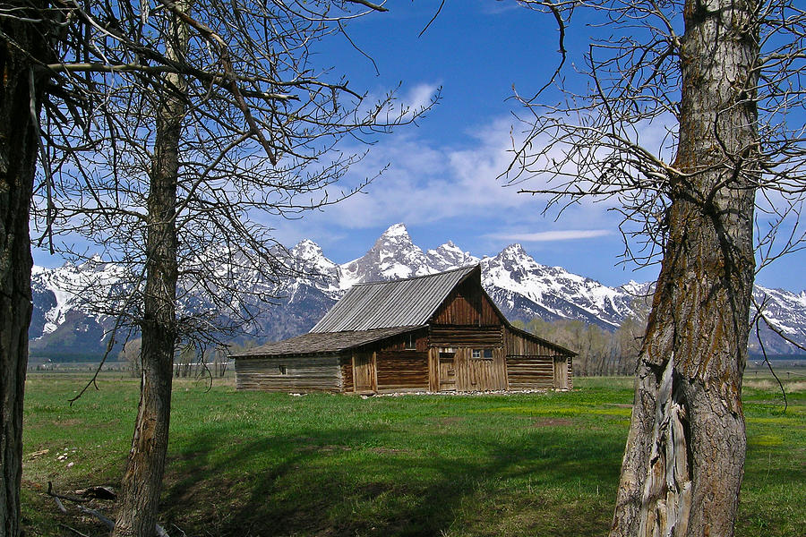 Teton Photograph - Teton Barn by Douglas Barnett