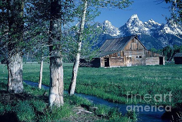 Teton National Park Photograph - Teton Homestead  by Dennis Hammer