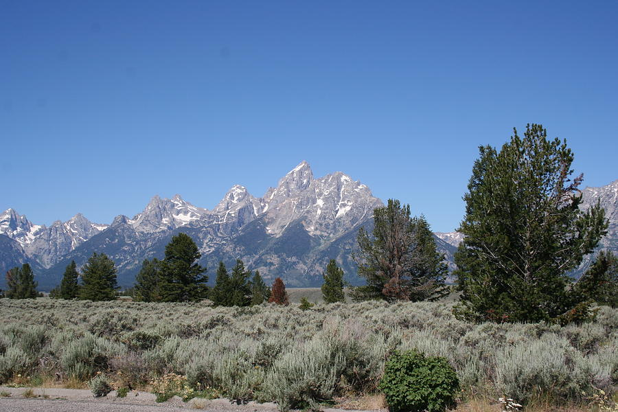 Mountain Photograph - Teton Majesty by Gregory Jeffries