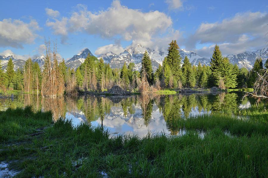 Grand Teton National Park Photograph - Teton Mirror Image by Ray Mathis