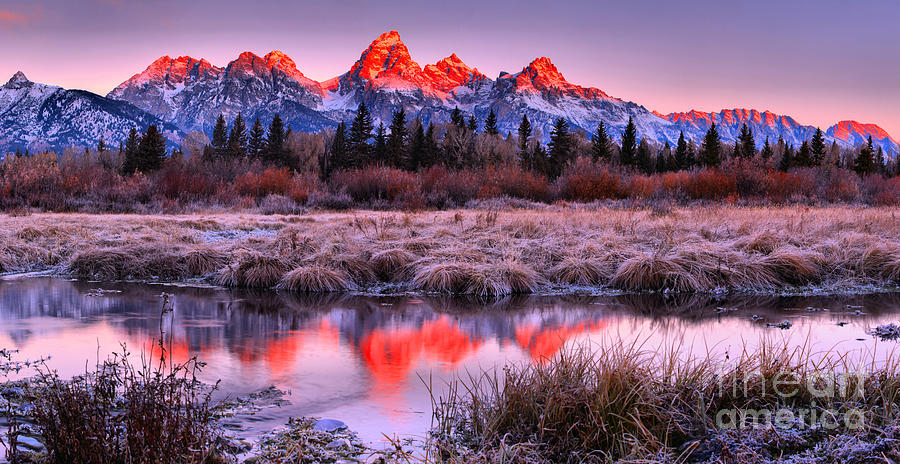 Grand Teton National Park Photograph - Teton Reflections In The Frosted Willows by Adam Jewell