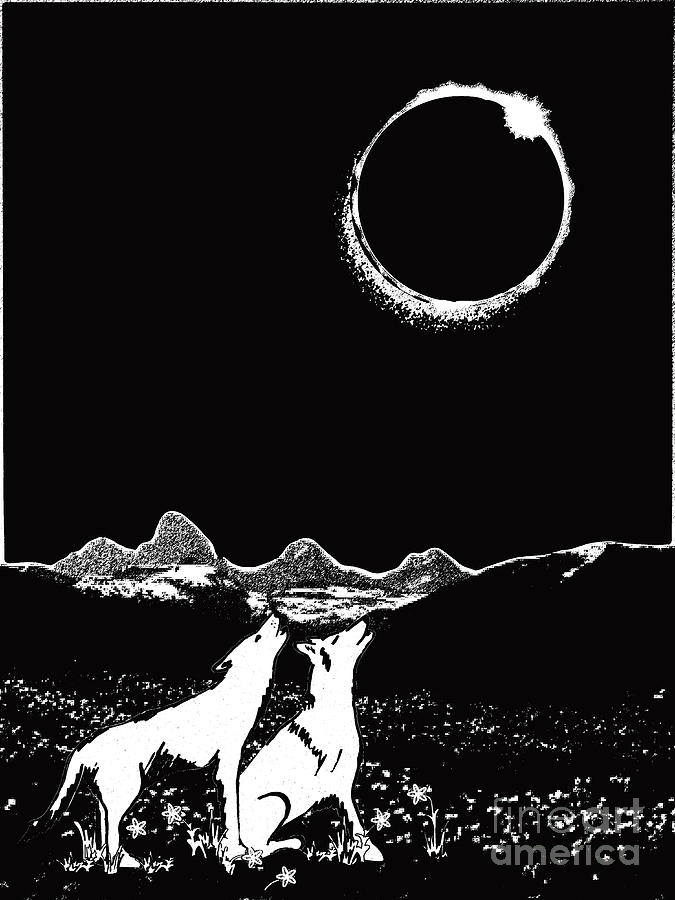 teton total solar eclipse by Shelley Myers