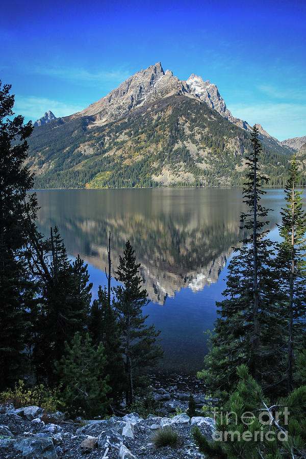 National Parks Photograph - Tetons National Park by Webb Canepa
