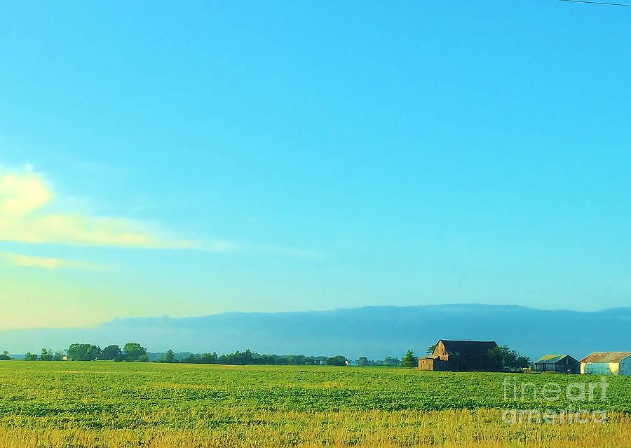 Summer Photograph - Texarkana Farm Scene by Ranchers Eye Photography
