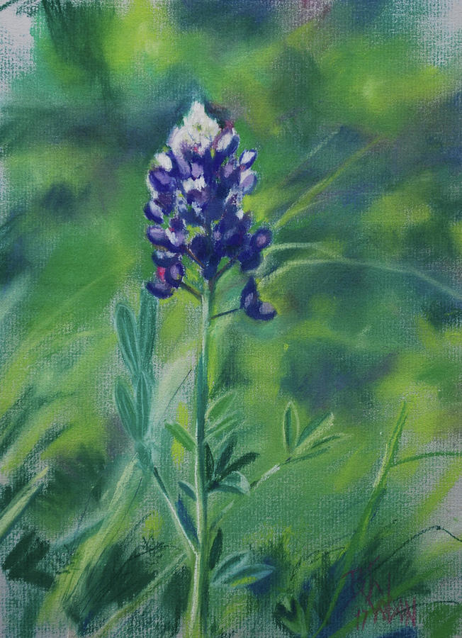 Texas State Flower Painting - Texas Beauty by Billie Colson