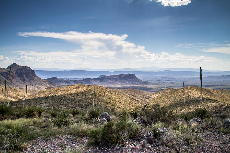 Big Bend National Park Photograph - Texas Landscapes #2 by Robert J Caputo