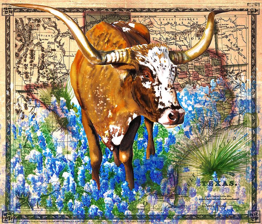 Texas Longhorn in Bluebonnets by Daniel Adams