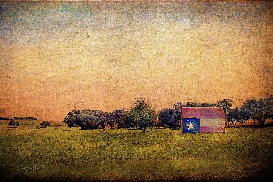 Landscape Digital Art - Texas Morn by Carol Fox Henrichs
