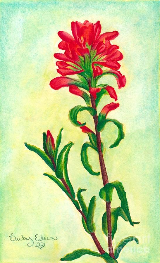 Texas Paintbrush by Becky Eileen Eller