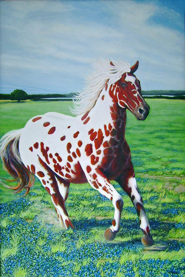 Horse Painting Painting - Texas Red Appaloosa by Charles Wallis