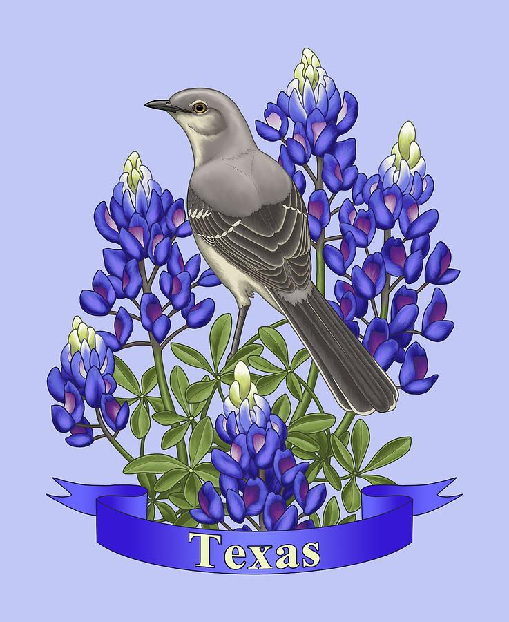 birds painting texas state mockingbird and bluebonnet flower by crista forest
