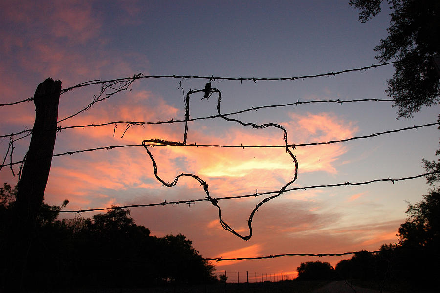 Barbed Wire Photograph - Texas Sunset by Robert Anschutz