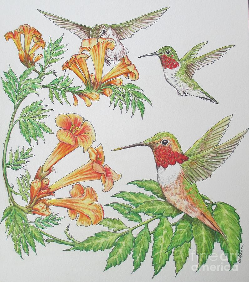 Trumpet Vine Painting - Texas Trumpet Trio by Sue Bonnar