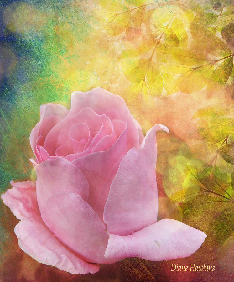 Rose Photograph - Textured Rose by Diane Hawkins