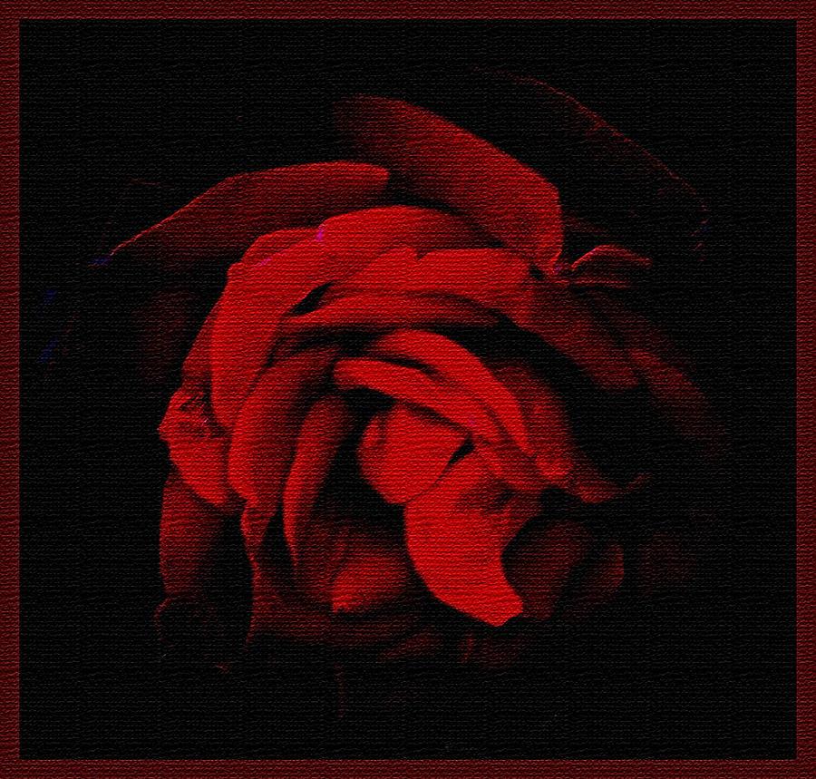 Flower Photograph - Textured Rose by Russ Mullen