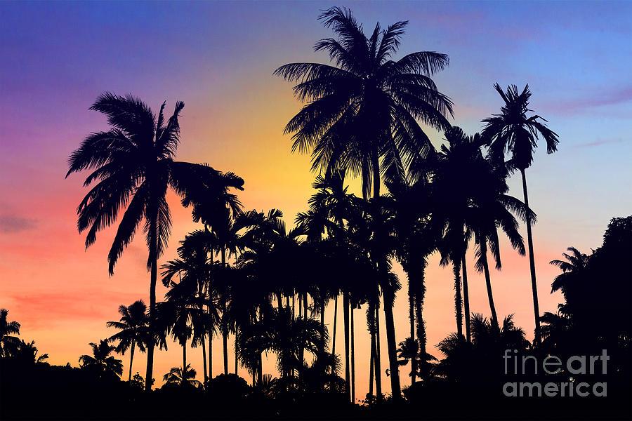 Thailand Photograph - Thailand by Mark Ashkenazi