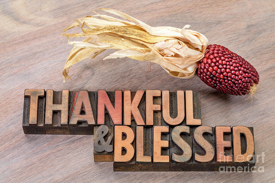 thankful and blessed - Thanksgiving theme by Marek Uliasz