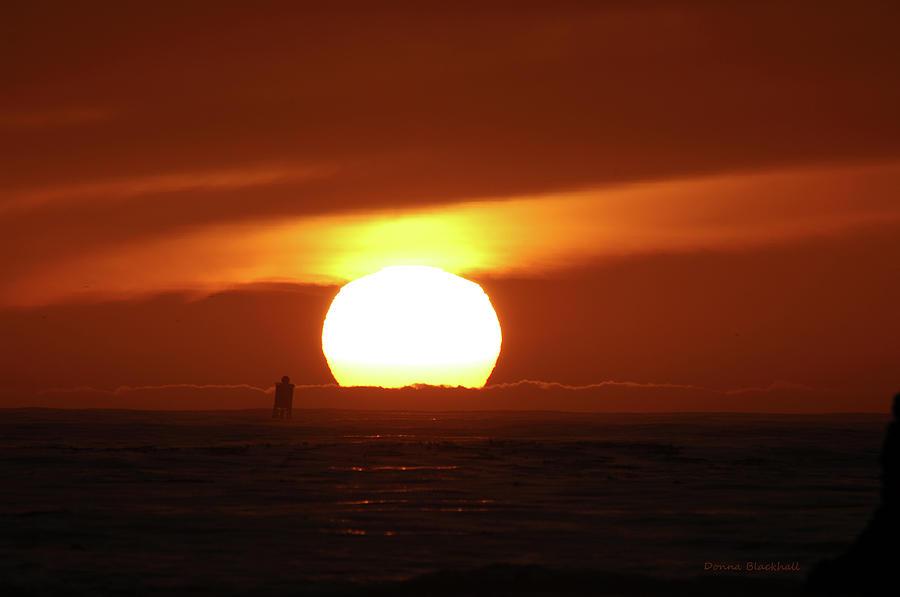 That Blazing Sun Photograph by Donna Blackhall
