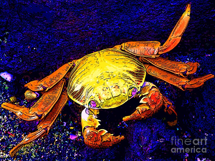Crab Photograph - That Girl by Keri West
