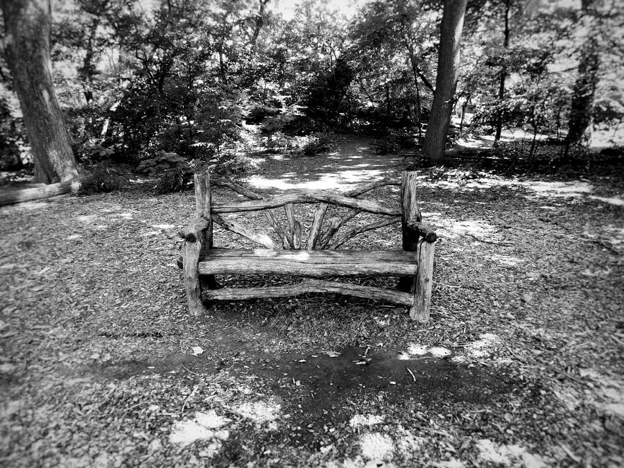 Black Photograph - That Weird Bench One by Robbie Masso