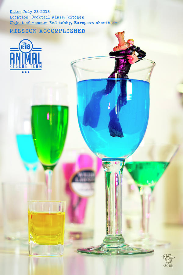 Miniature Photograph - The 1-18 Animal Rescue Team - Cat In Cocktail Glass by Martine Carlsen