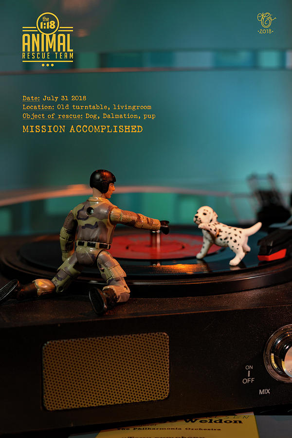 Miniature Photograph - The 1-18 Animal Rescue Team - Dog on turntable by Martine Carlsen