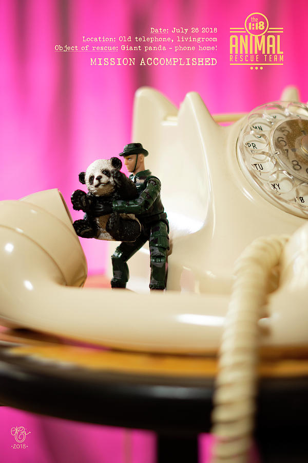 Miniature Photograph - The 1-18 Animal Rescue Team - Panda phone home, retro telephone by Martine Carlsen