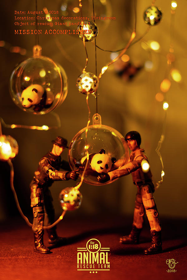 Miniature Photograph - The 1-18 Animal Rescue Team - Pandas in Christmas balls by Martine Carlsen
