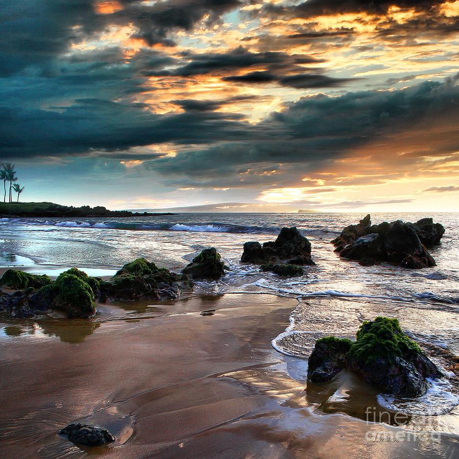 Aloha Photograph - The Absolute by Sharon Mau