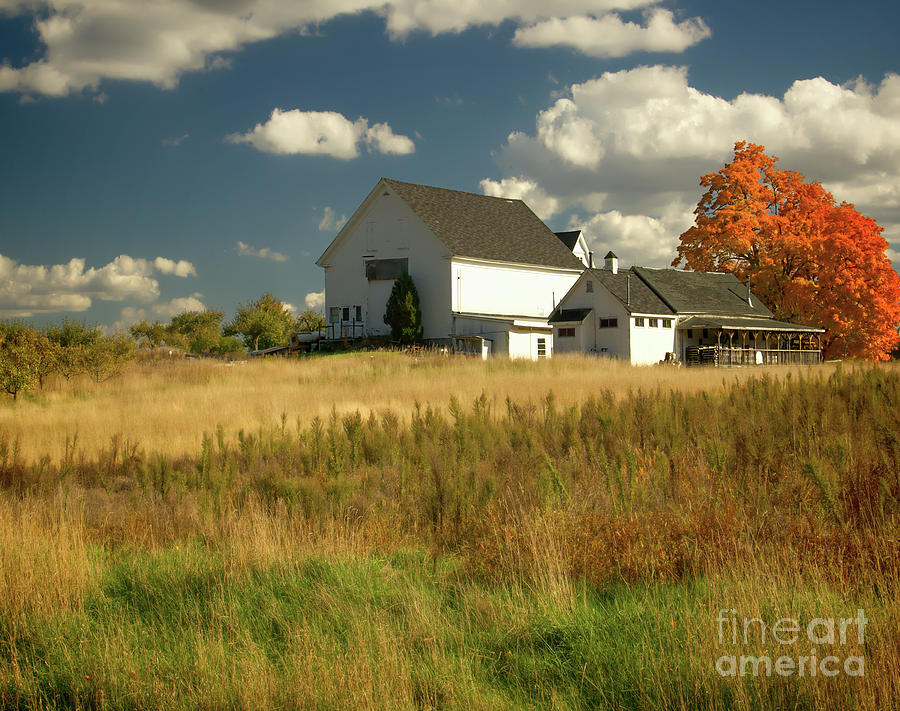 New Hampshire Farms Photograph - The Acres by Diana Nault