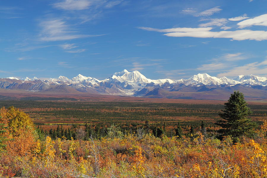 The Alaska Range From The Denali Highway by Steve Wolfe