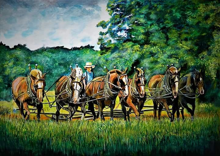 The Amish Team by Mike Benton
