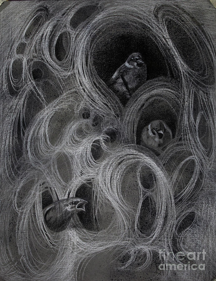 Perception Drawing - The Amodal Perception 4 by Raj Maji