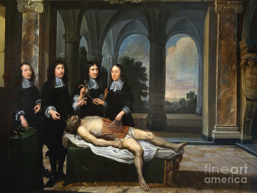 The Anatomy Lesson, 1679, St. John\'s Hospital, Bruges, Belgium ...