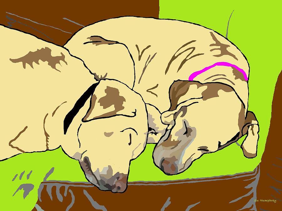 Dogs Digital Art - The Angels Sleep by Su Humphrey