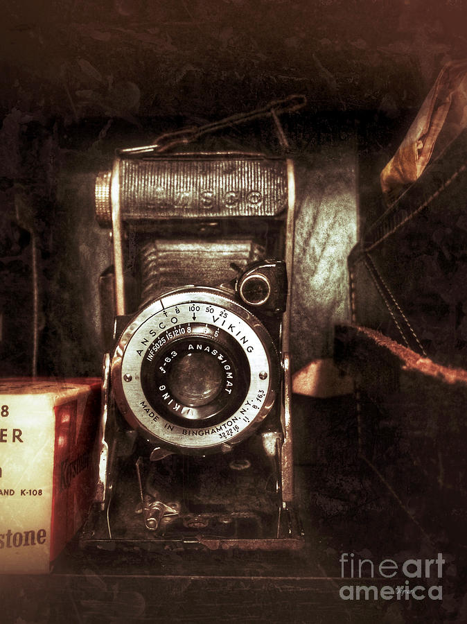 Camera Photograph - The Ansco Viking  by Steven Digman