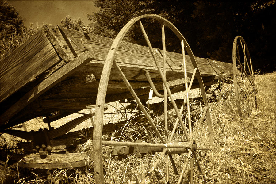 Wagon Photograph - The Apple Cart by William Evans