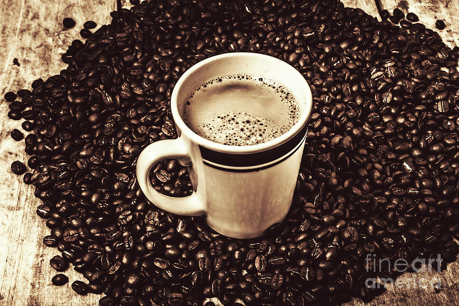 Beans Photograph - The Art Of Brewing by Jorgo Photography - Wall Art Gallery
