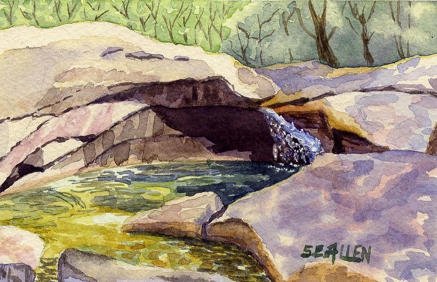 The Basin Painting - The Basin by Sharon E Allen