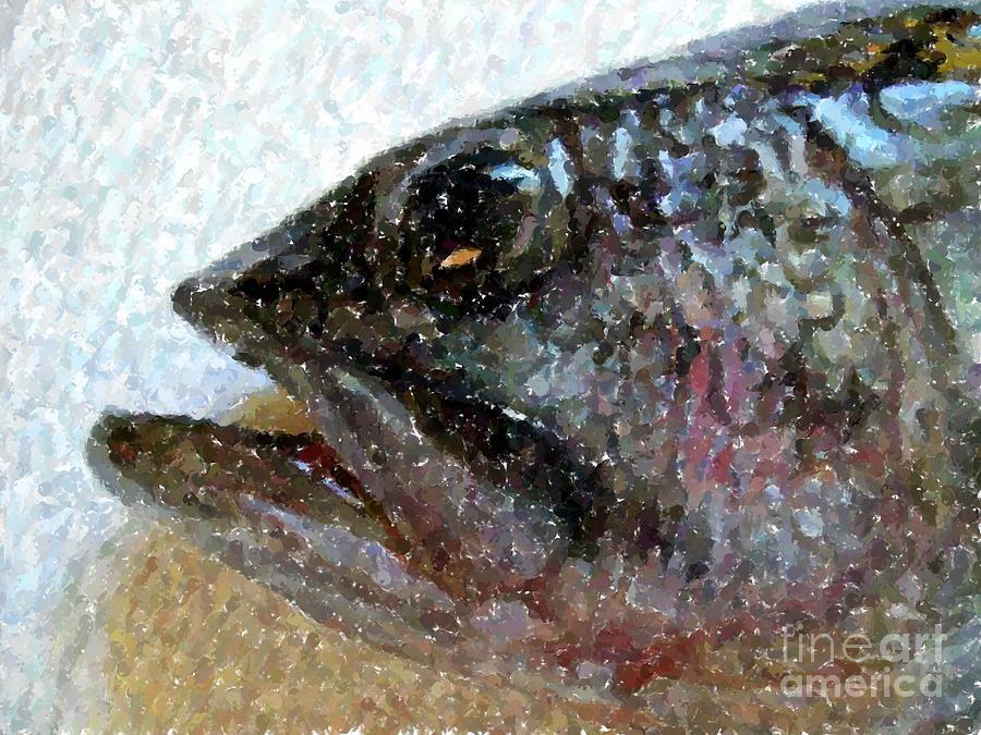Bass Photograph - The Bass by Carol Grimes