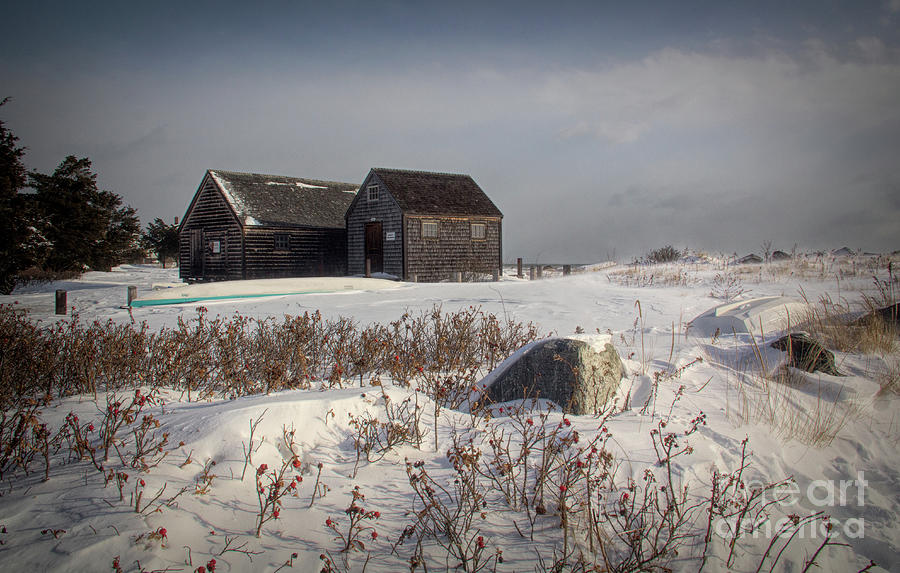 Winter Scenery Photograph - The Beach Huts by Diana Nault
